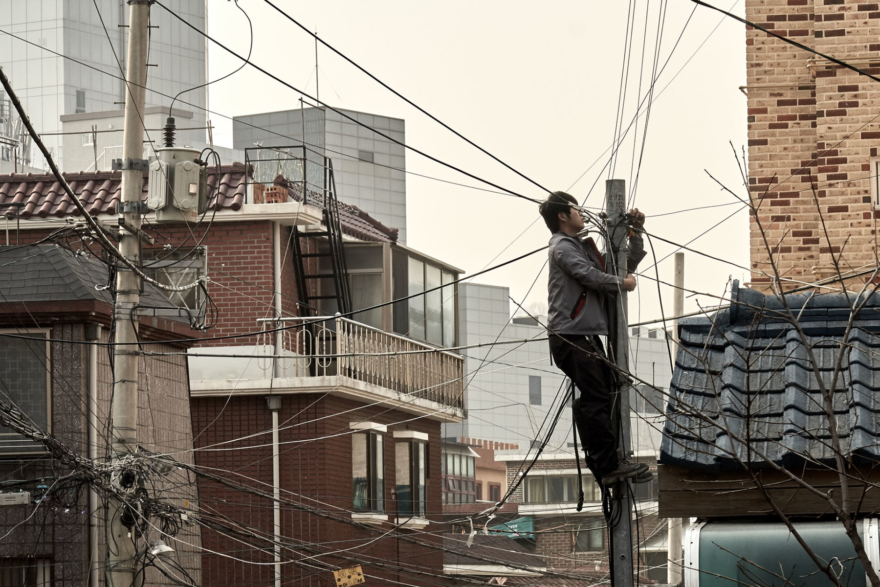 korean power and phone cable photograph