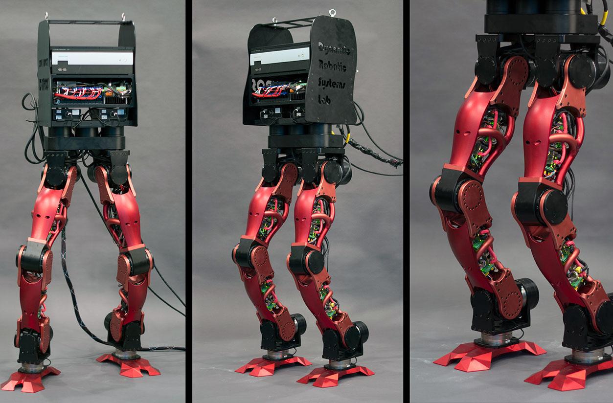 fullsize humanoid leg design